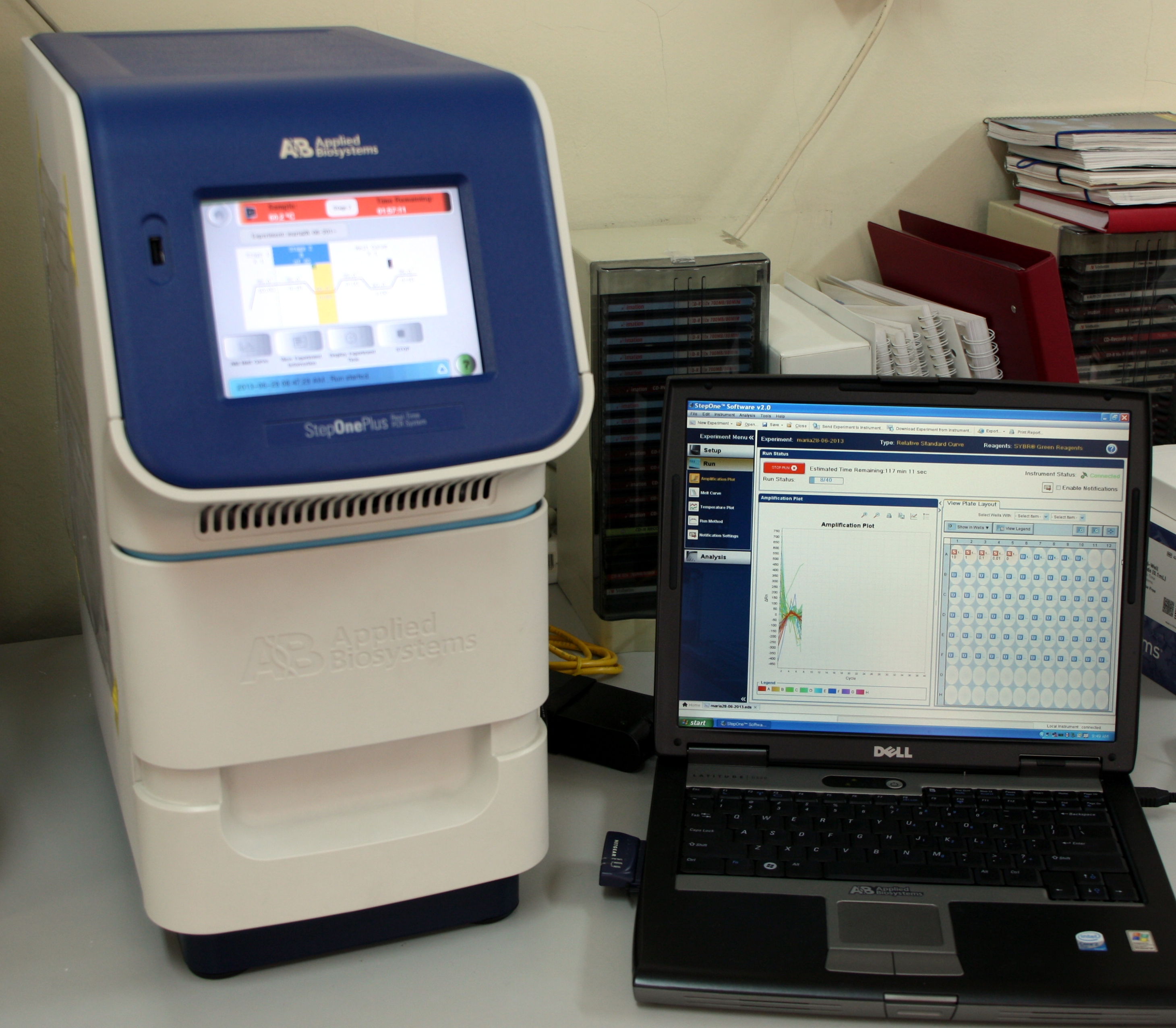 StepOne real-time PCR system.